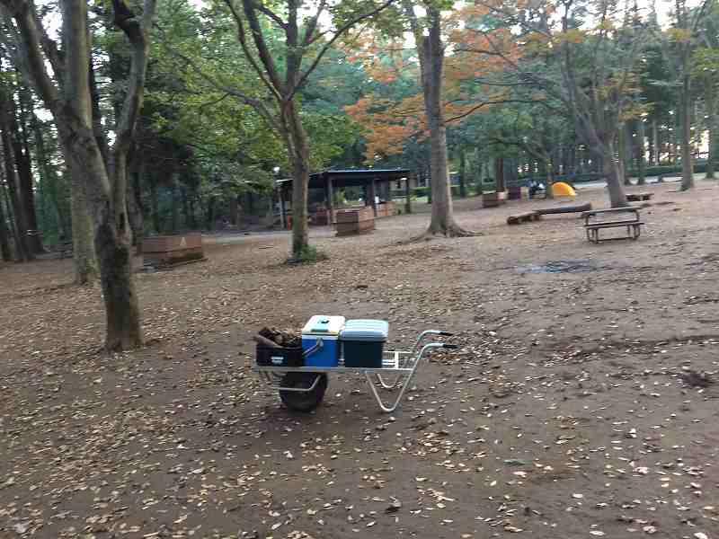 【薪の香りが懐かしい】火を囲む晩秋のお手軽キャンプ【節約コース】テントの設営場所