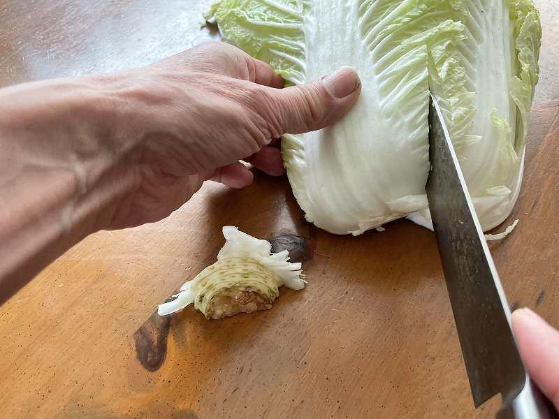 【意外と簡単!】いただいた白菜を漬けてみる【塩分がポイント】6