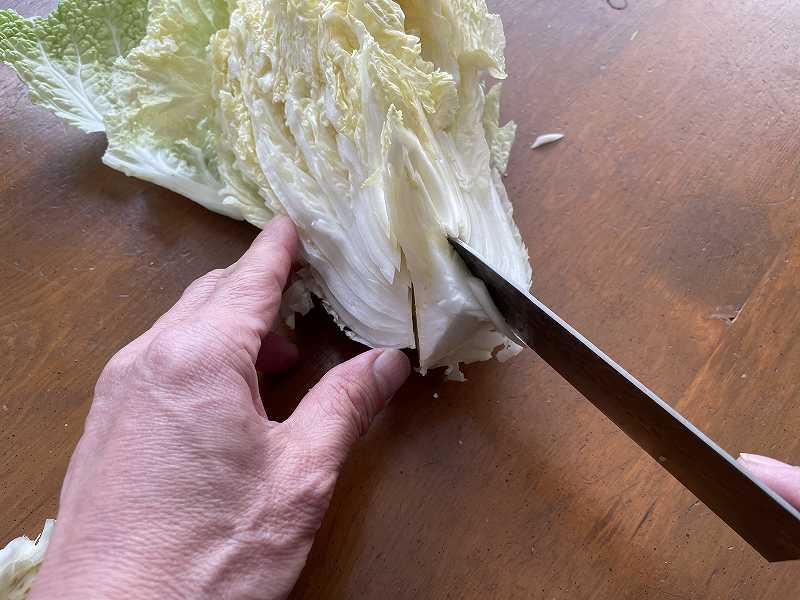 【意外と簡単!】いただいた白菜を漬けてみる【塩分がポイント】7