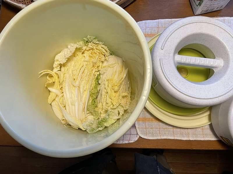 【意外と簡単!】いただいた白菜を漬けてみる【塩分がポイント】13