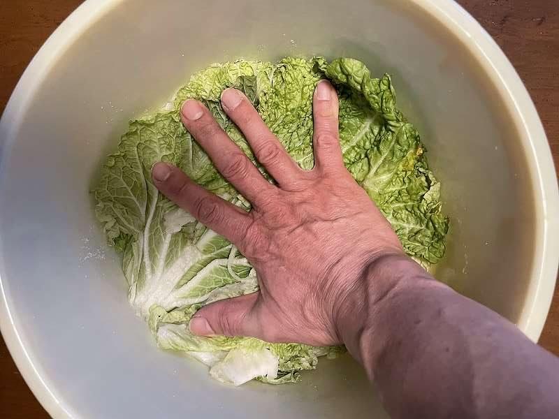 【意外と簡単!】いただいた白菜を漬けてみる【塩分がポイント】15