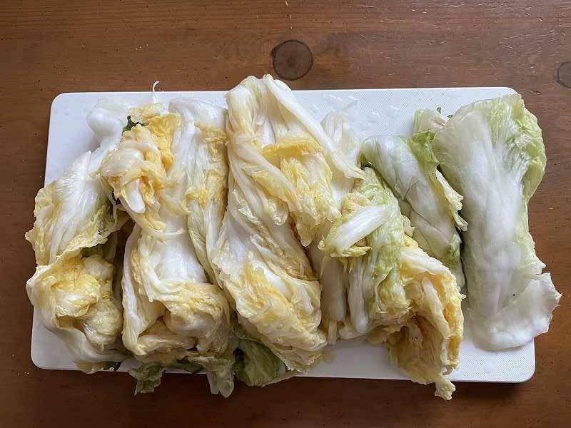 【意外と簡単!】いただいた白菜を漬けてみる【塩分がポイント】18