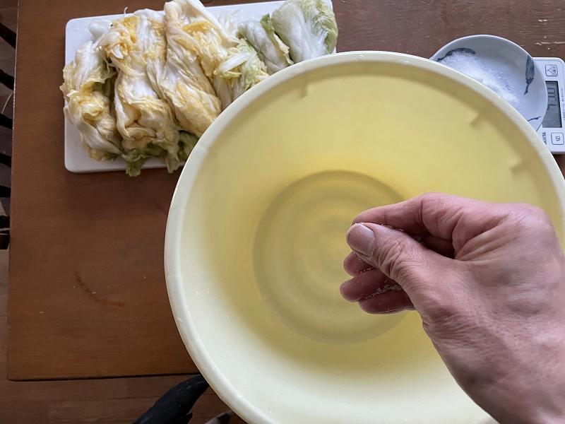 【意外と簡単!】いただいた白菜を漬けてみる【塩分がポイント】20